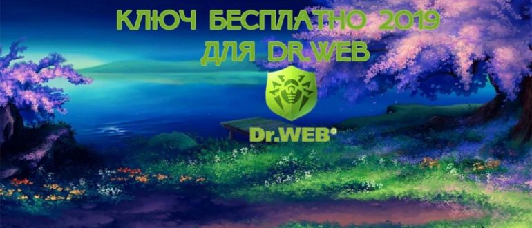 dr web security space 12